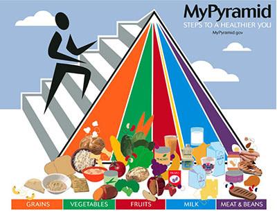 My Pyramid 2005